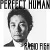 PERFECT HUMAN - Single ジャケット画像
