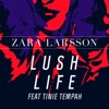 Lush Life (Tinie remix) artwork