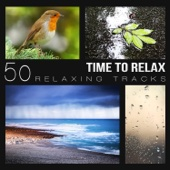 Time to Relax: 50 Relaxing Tracks - Music for Spa, Healing Songs for Mindfulness, Wellness Center Sounds, Deep Regeneration and Brain Stimulation for Sleeping Time