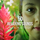 50 Relaxing Sounds – Healing Music Therapy for Meditation, Songs for Yoga, Reiki & Sleep, Natural Ambient for Massage