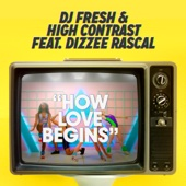 [Download] How Love Begins (feat. Dizzee Rascal) [Hardcore Will Never Die Edit] MP3