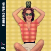 Flamenco Fusion - Various Artists
