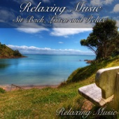 Relaxing Music: Sit Back, Listen and Relax - Relaxing Music