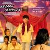 Anjaan Parindey