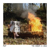 PUP - The Dream Is Over  artwork