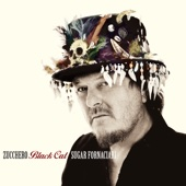 Black Cat - Zucchero