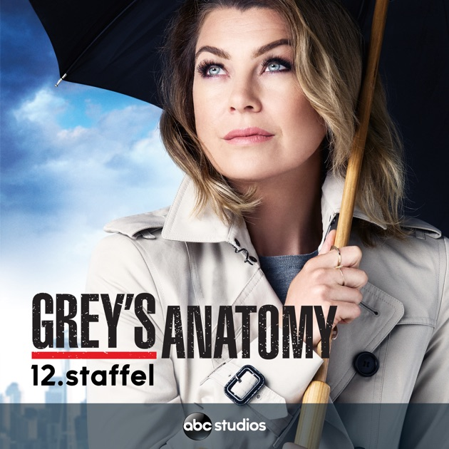 Greys Staffel 12