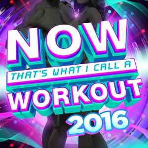 Now That's What I Call a Workout 2016 - Various Artists, Various Artists