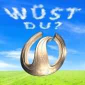 Wüst Du (Minimal Mix) - Wahnsinns3