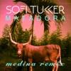 Matadora Medina Remix Single