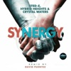 Synergy (David Puentez RMX) - Single ジャケット写真