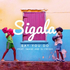 Say You Do by Sigala