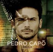 Pedro Capó - Vivo ilustración