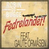 Robin og Bugge - Fedrelandet (feat. Gaute Ormåsen) artwork