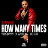 How Many Times (feat. Chris Brown, Lil Wayne, & Big Sean) - Single, DJ Khaled