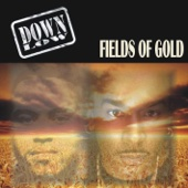 Fields of Gold - Single cover art