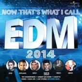 Now That's What I Call EDM 2014