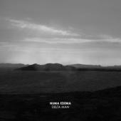 Numa Edema - Delta Man artwork
