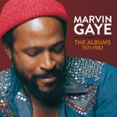Marvin Gaye: The Albums 1971-1982
