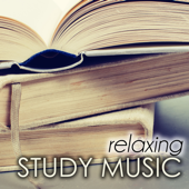 Relaxing Study Music - Background Homework Songs for the Summer Break