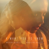 I Want You to Know - Single