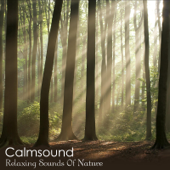 Relaxing Sounds of Nature - The Pure Meditation Album