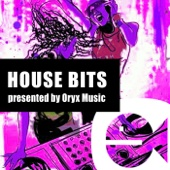 Best of House Bits 24 - Various Artists