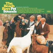 The Beach Boys - Pet Sounds artwork