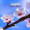 Make It Through, Calippo