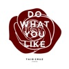 Do What You Like - Single, Taio Cruz