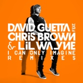 David Guetta, Chris Brown & Lil Wayne - I Can Only Imagine (Extended) artwork