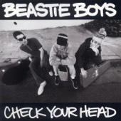 Check Your Head cover art