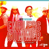 Endless Summer (feat. KES the Band) - Ricky Blaze