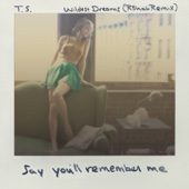 Wildest Dreams (R3hab Remix) - Single cover art