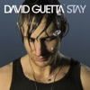 Stay - EP, David Guetta