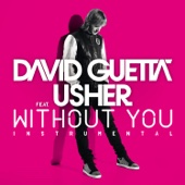 Without You (feat.Usher) [Instrumental Version] - Single cover art