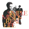 Real Life, Simple Minds