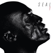 Seal - 7  artwork