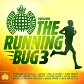Various Artists - Ministry of Sound Presents: The Running Bug 3  artwork