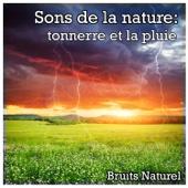 Sons de la nature: tonnerre et la pluie