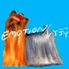 Emotion / Lady - Single ジャケット写真