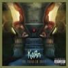 The Paradigm Shift, Korn