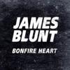 Bonfire Heart - Single, James Blunt