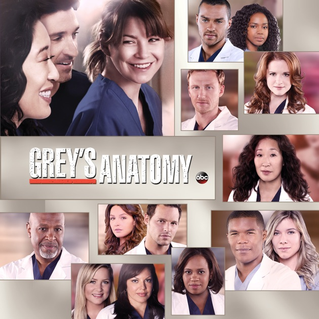 Grey's Anatomy, Season 10 on iTunes