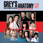 Grey's Anatomy (Original Soundtrack) [Box Set]
