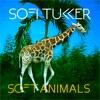 Soft Animals - EP