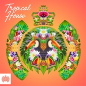 Various Artists - Tropical House - Ministry of Sound  arte
