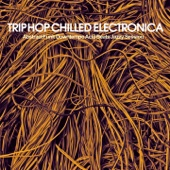 Trip Hop Chilled Electronica (Abstract Funk Downtempo Acid Beats Jazzy Session)