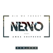 Did We Forget (feat. Amba Shepherd) [Remixes] - Single