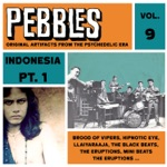 Pebbles Vol. 9, Indonesia Pt. 1, Originals Artifacts from the Psychedelic Era